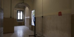 Architecture-of-Embodiment-emerging-environments